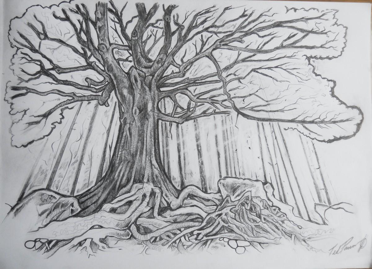 Tree of Mystery